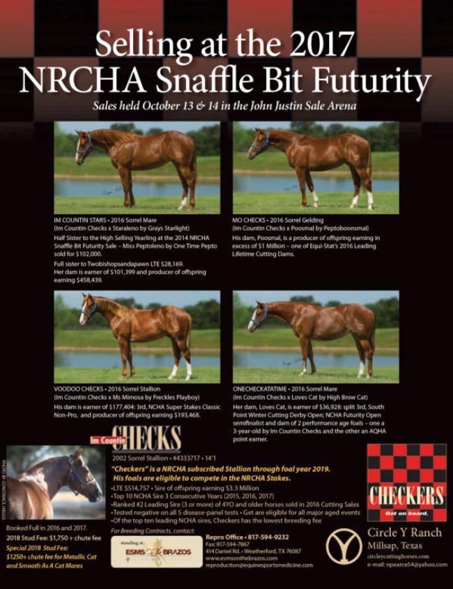 2017 NRCHA Snaffle Bit Futurity